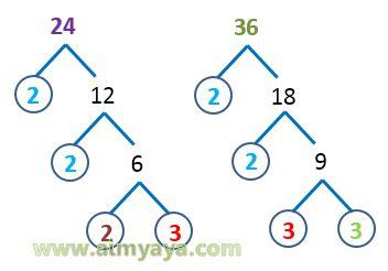 Gambar: FPB dari 24 dan 36 (pohon Faktor)