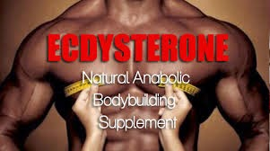 Best Natural Supplements