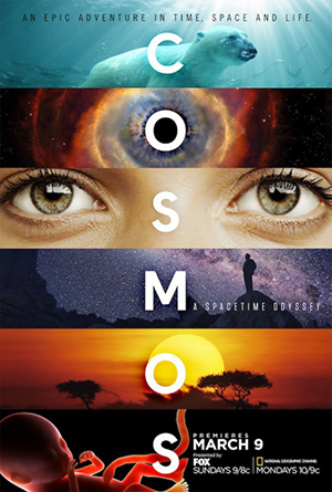 Poster Cosmos: A Spacetime Odyssey 2014