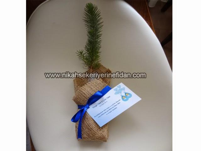 Bebek Mevlit Fidanı Çanakkale Rüzgar ve Çınar bebek 4