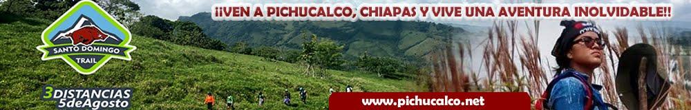 www.pichucalco.net