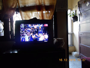 "The ""DARK SIDE OF CAT MATATA""  on ""T.V"" ?"