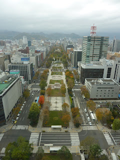 Odori Park from Sapporo TV tower during  autumn / fall