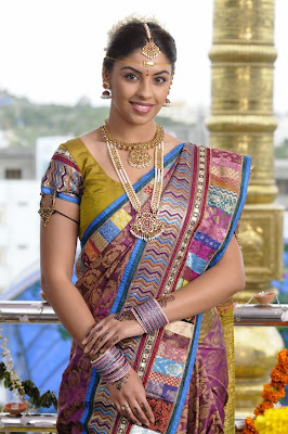 multicolour silk saree