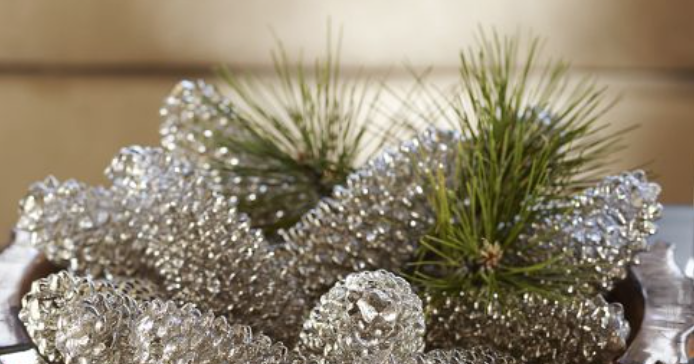 100 things 2 do mirrored pine cones or not for Things to make with fir cones