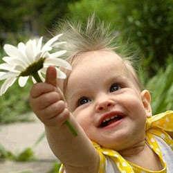 Segredos da felicidade