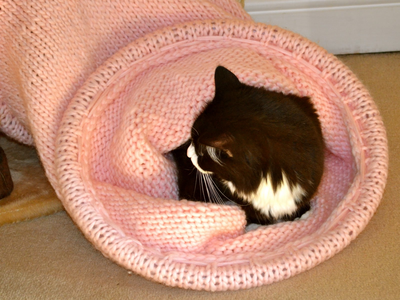 Knitting Novice: Another Project: The Knitted Cat Tunnel