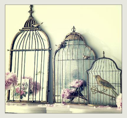dekoratif kuş kafesi, dekoratif ayna