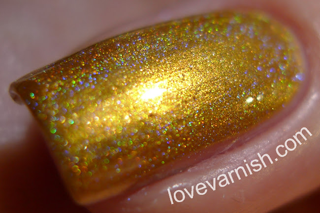 Elevation Polish Zhenjin