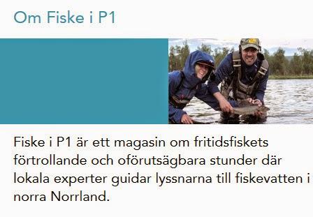 http://gavleoring.blogspot.se/p/media.html