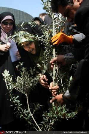 نهال صلح در روز جهانی صلح - شهریور 92