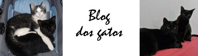 Blog dos Gatos