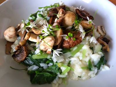 Spring risotto with mushrooms