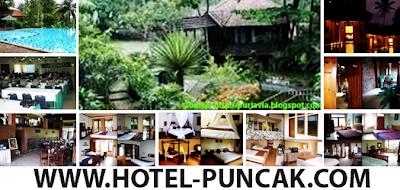 <b>puri-avia-hotel</b>