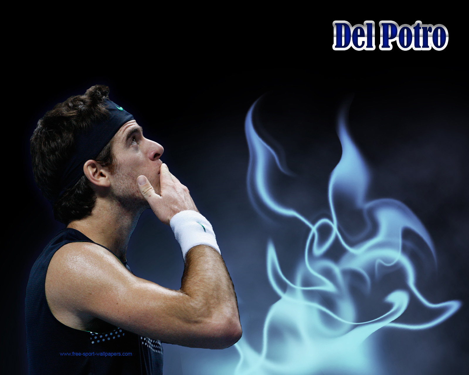Michael Jordan: Juan Martin del Potro Wallpapers