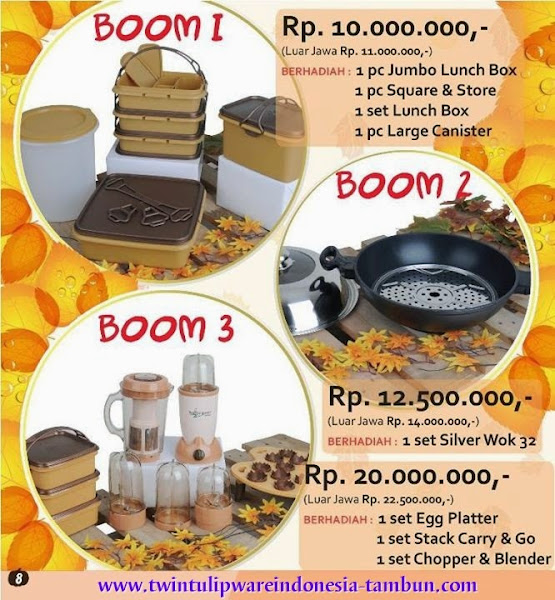 BOOM Twin Tulipware | September - Oktober 2014