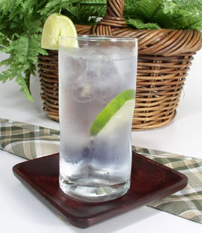 gin and tonic gin and tonic the complete guide for the perfect mix ...