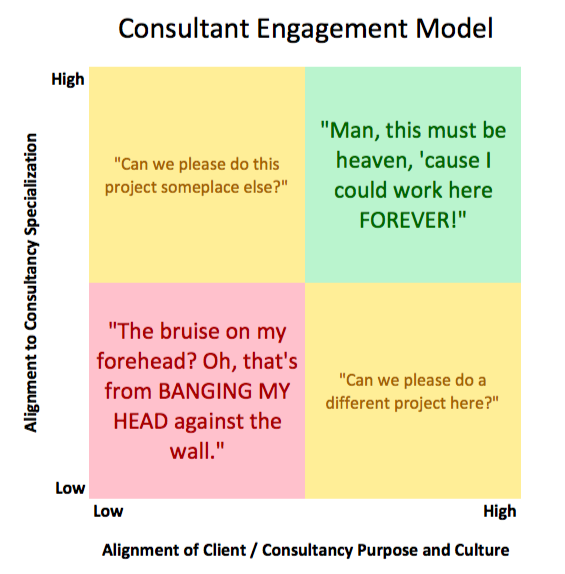Consultant Engagement Model