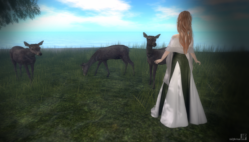 Second Life Virtual Role-Play Fashion Review