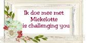 Miekelotte challenge blog