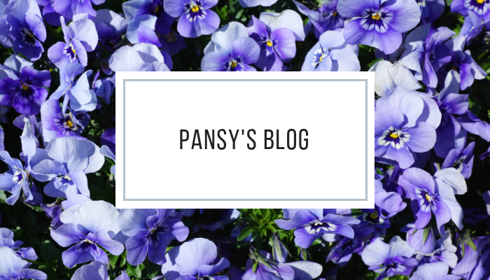PANSY'S BLOG