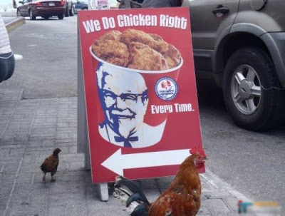 Chicken loves to be fried by KFC