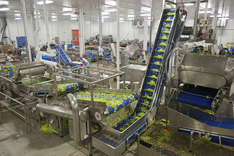 Beverage Food Manufacturing Business For Sale In Canada