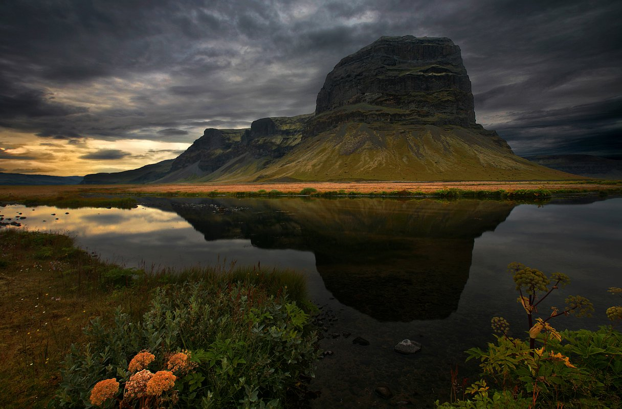 Amelia Morgue Cool Landscapes