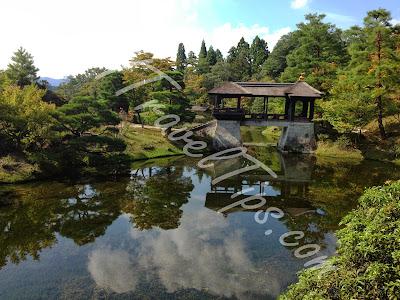 Yokuryuchi Pond again