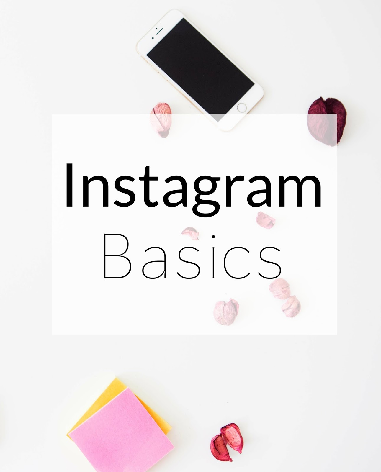 The Basics of Instagram: finding your niche, scheduling pictures and getting followers.
