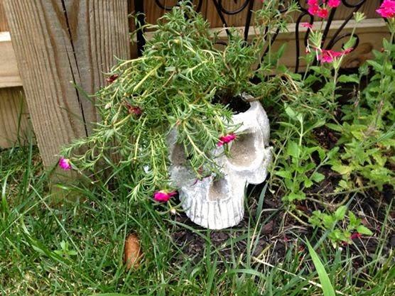 Goth Gardening