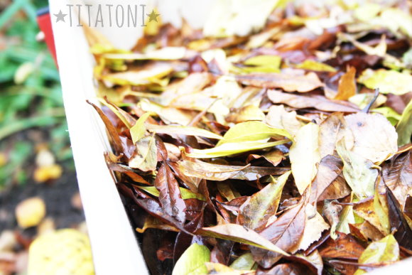 Herbstlicher Blätterhaufen zum Basteln