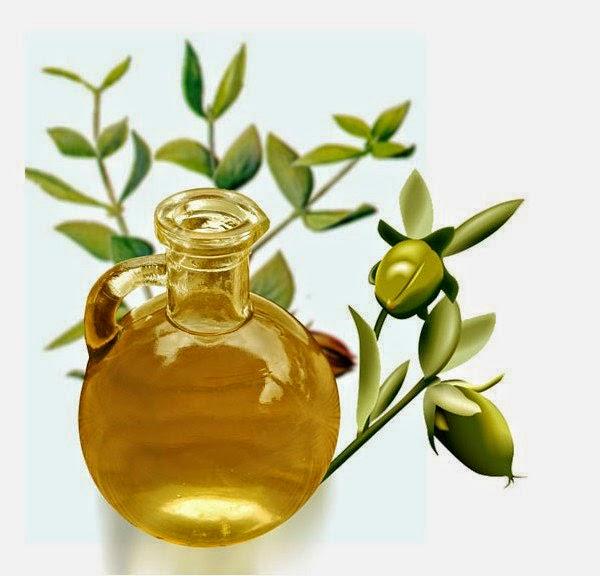 tinh dầu oregano trị viêm phế quản