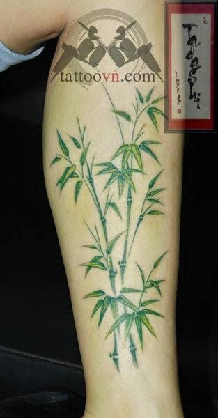 hinh xam tattoo cay truc o tphcm