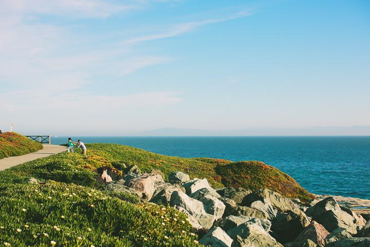 Santa Cruz, engagement, wedding photographer
