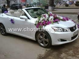 Cho thuê xe cưới mui trần Lexus IS 250 - xe cưới màu trắng 1