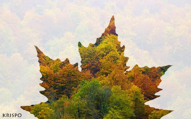 máscara de hoja con árboles en otoño