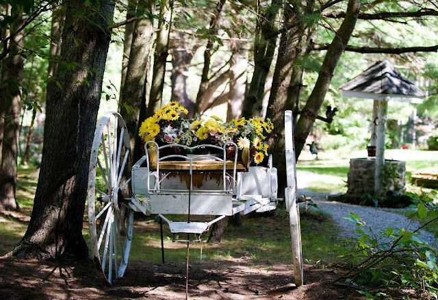 A large wooden wagon painted white and planted with pretty yellow pansies, Marigold Springs Orillia