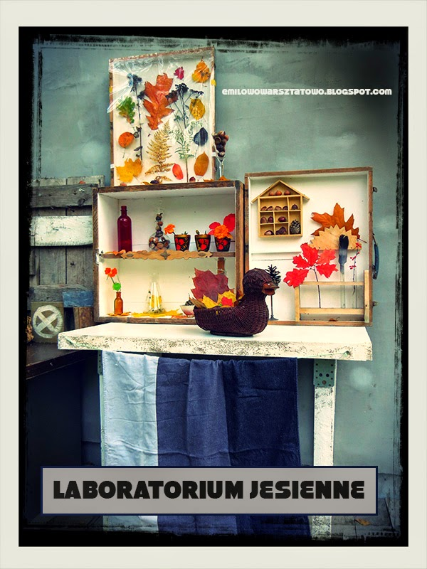 http://emilowowarsztatowo.blogspot.com/2014/10/laboratorium-jesienne.html
