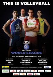 Liga Światowa 2011
