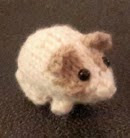 http://www.ravelry.com/patterns/library/a-knitted-newborn-guinea-pig
