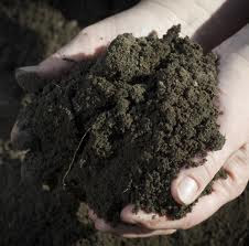 gardening soil