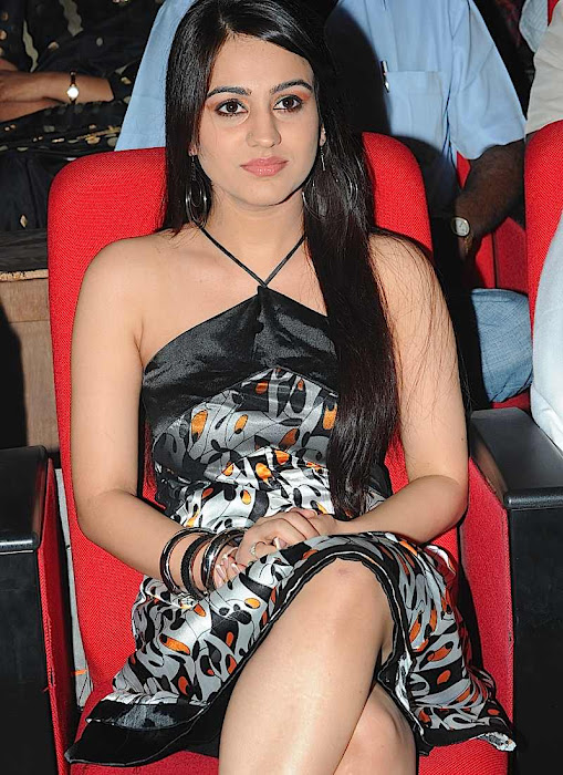 aksha at gaurd audio launch, aksha new