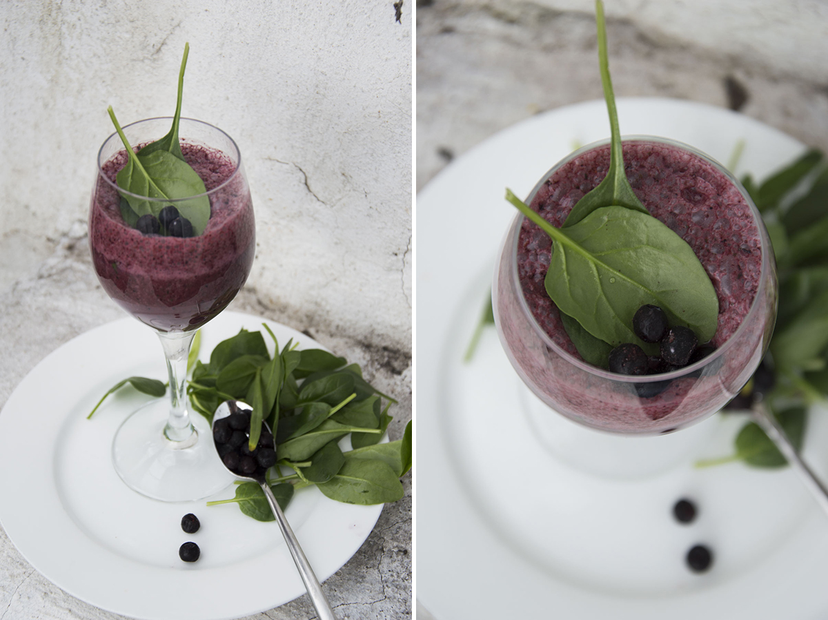 http://blogdogdaysofsummer.blogspot.co.at/2015/04/frozen-green-blueberry-smoothie.html