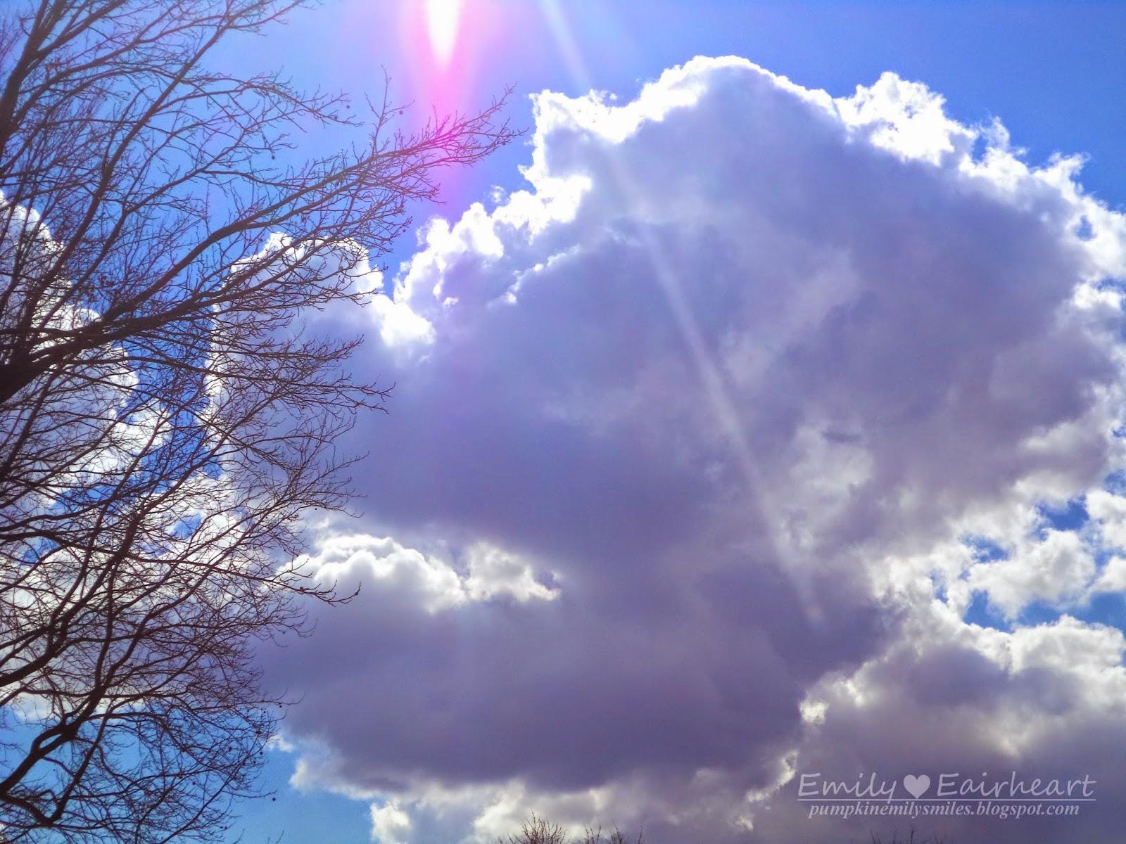 Dragon Head Cloud Shape
