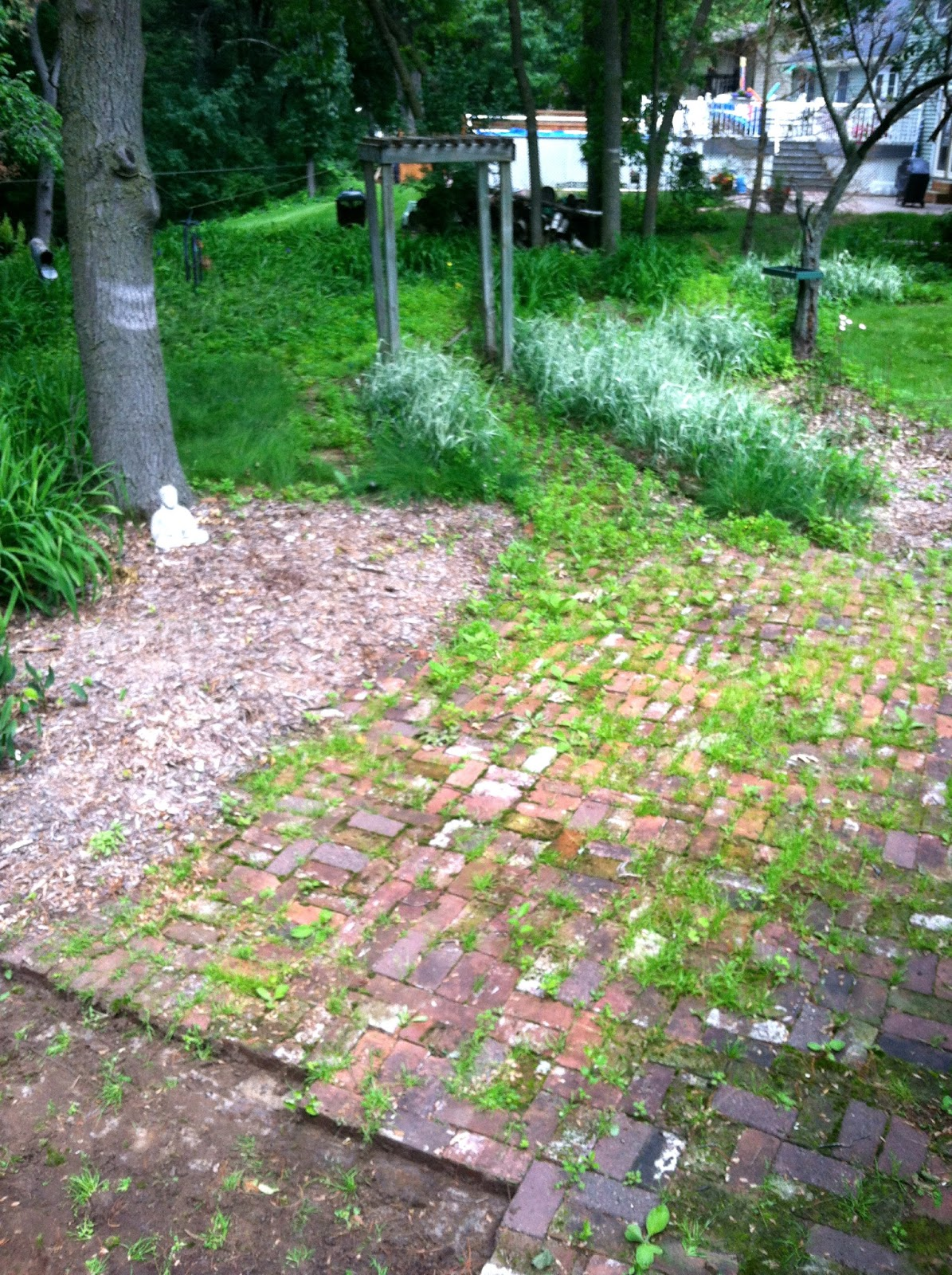 Backyard Bonfire Band : We started pulling up the bricks, so that we can power wash them and