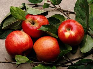 แอปเปิ้ล ผลไม้ลดน้ำหนัก