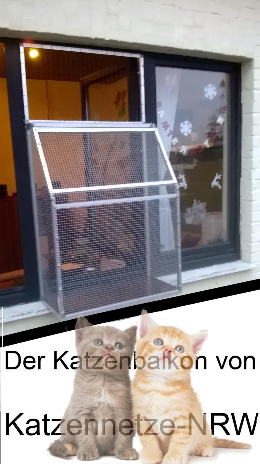 Fenstersicherung für Wohnungskatzen