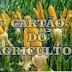 """VEREADOR RILDO JOAQUIM COBRA IMPLANTAÇÃO DE """"CARTÃO DO AGRICULTOR"""""""