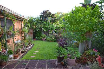 taman indah didepan rumah